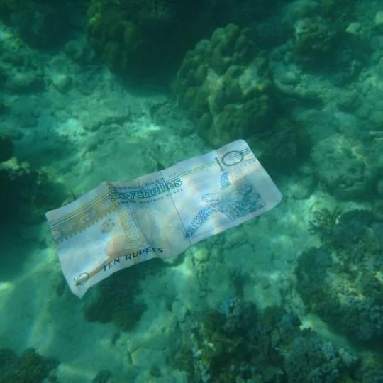seychellen-rupie virtuelle adresse